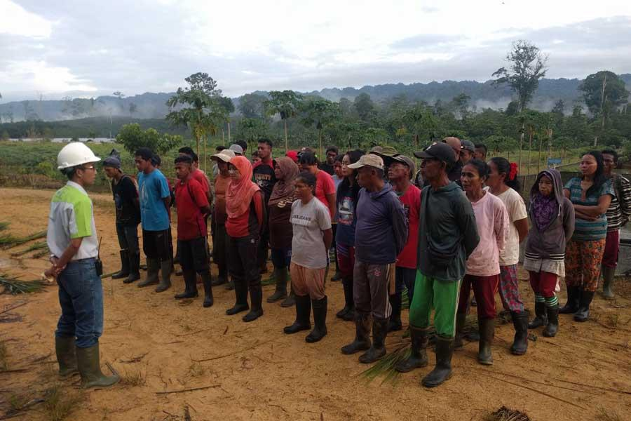 Dorong Serapan Minyak Kelapa Sawit, RSPO Dukung Konsep Shared Responsibility