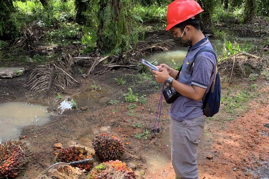 Data Mining dan Big Data Analysis di Perkebunan Kelapa Sawit